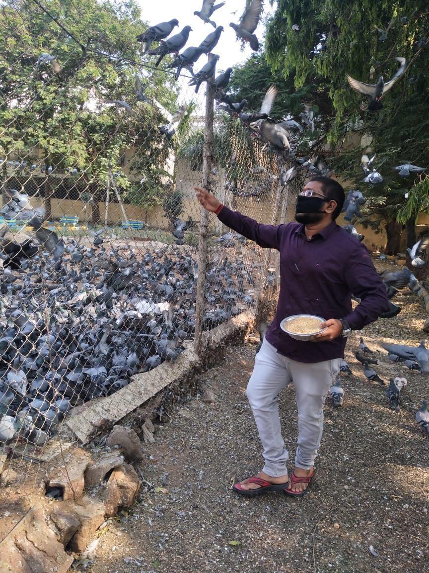 Bird Lover pausupuleti sashank