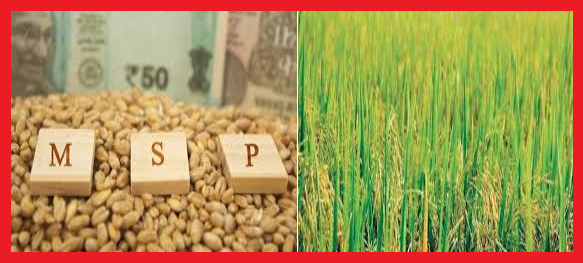 MSP Operations during Kharif Marketing Season 2020-21 About 87.20 Lakh Paddy Farmers have benefitted from KMS Procurement Operations with MSP value of Rs. 1,12,983.55 Crore