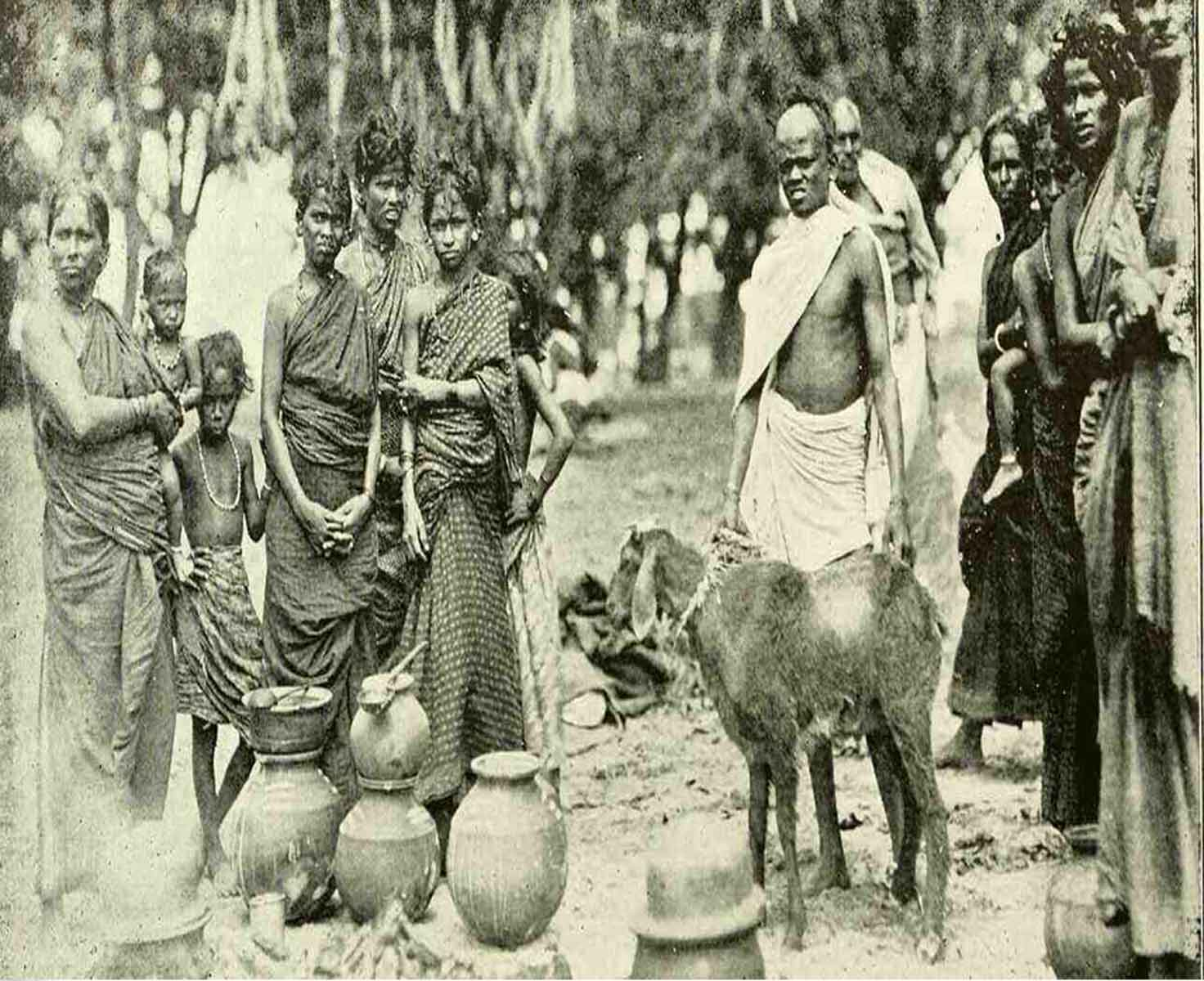 Development of Nomadic Tribes and Denotified Tribes