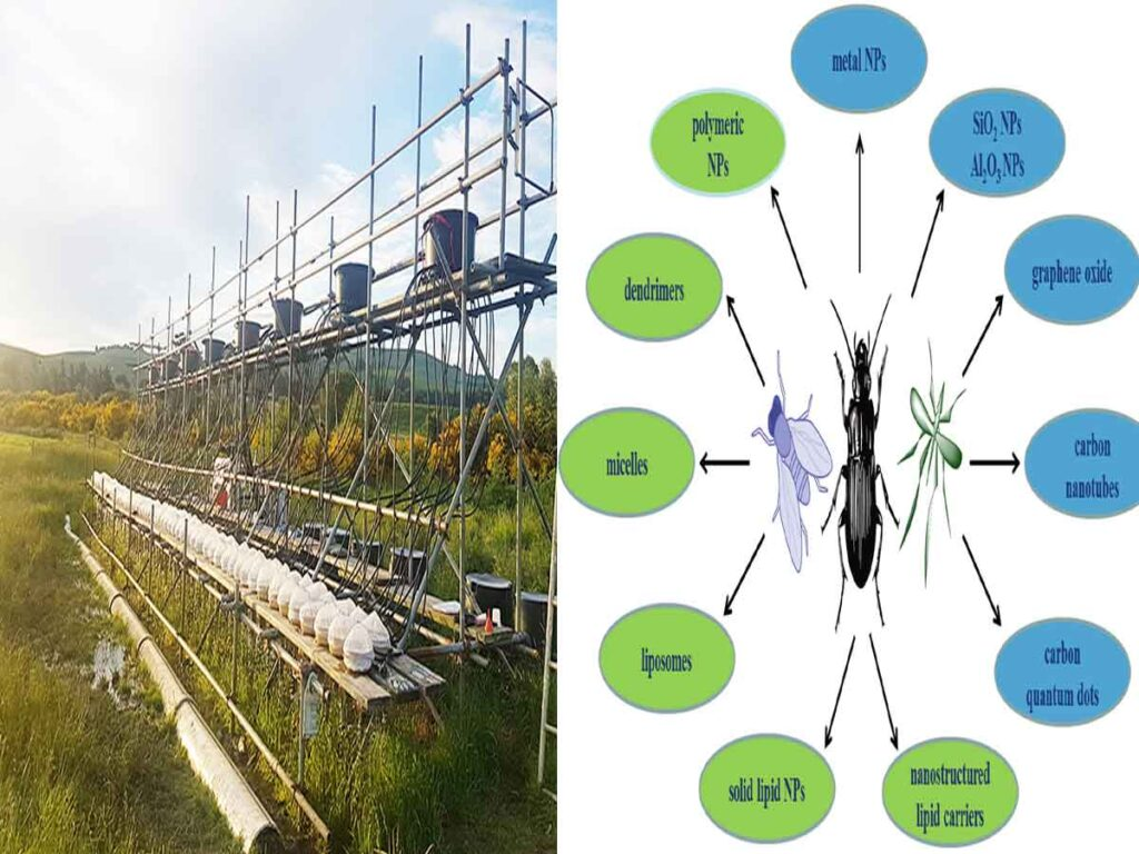 Double trouble: Insecticide and climate warming impact stream insect communities