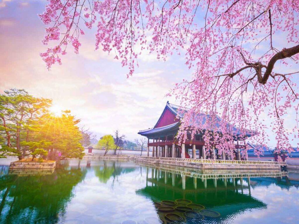 Korea Tourism Organization brings Korea to Indian homes through KXperience..